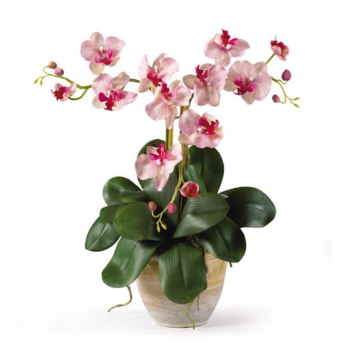 Nearly Natural Triple Mini Phalenopsis Silk Orchid Flower Arrangement $ 39.99