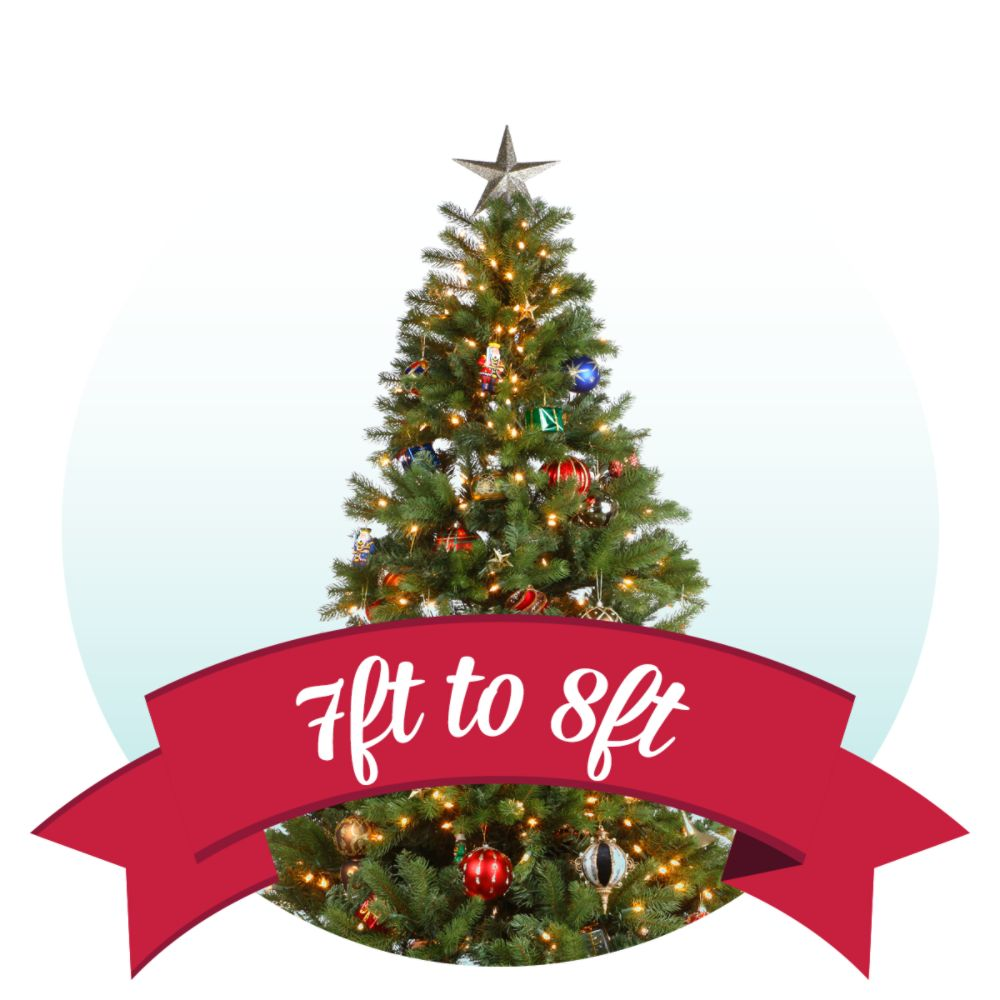 2018 Kmart Christmas Tree Picturesque Farm | www.picturesboss.com